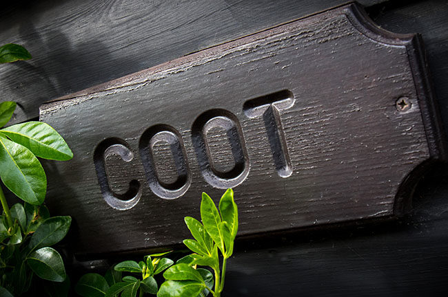 COOT image