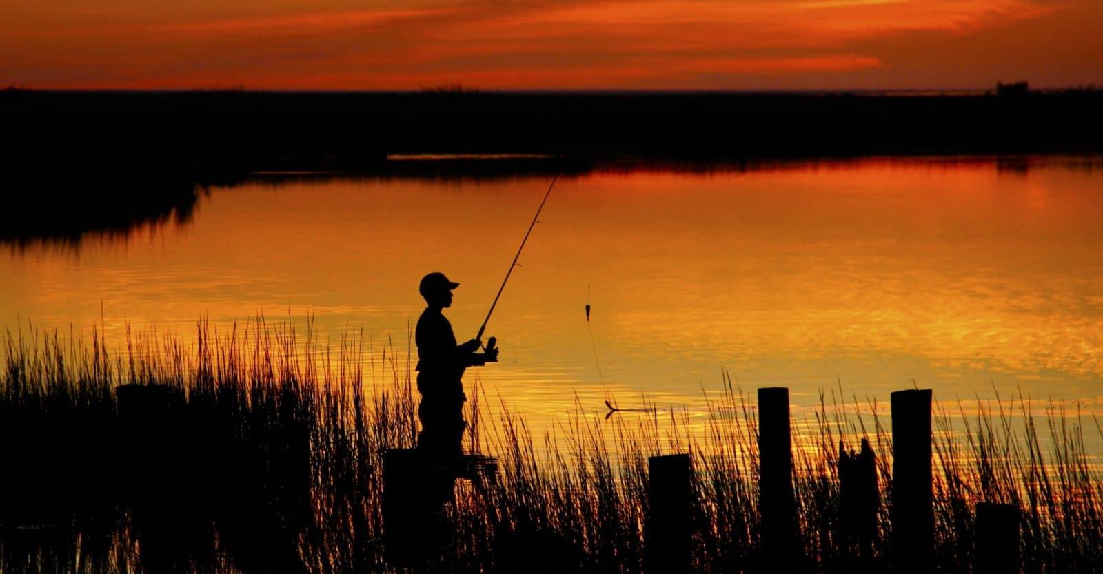 Autumn Fishing holidays on the Norfolk Broads